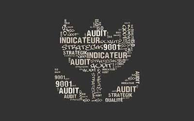 Dictionnaire Qualité